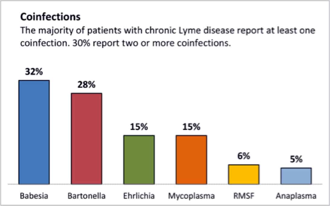 Chronic Lyme disease treatment often involves treating the many co-infections