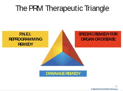 The PRM Therapeutic Triangle
