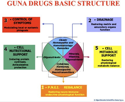 GUNA Drugs Basic Structure